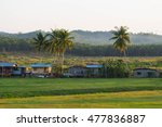 A Morning View Of A Village In...
