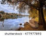 colorful autumn landscape... | Shutterstock . vector #477977893