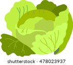 collection vegetables vector.... | Shutterstock .eps vector #478023937