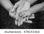 three hands of the same family  ... | Shutterstock . vector #478151563