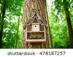Bird House In The Forest With...