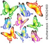 color butterflies isolated on a ... | Shutterstock . vector #478242403