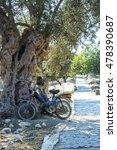 Old Motorbike Under An Olive...