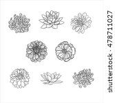 set of flowers hand draw | Shutterstock .eps vector #478711027