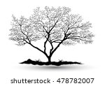 silhouettes of trees tree casts ... | Shutterstock .eps vector #478782007