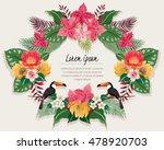 vector illustration of tropical ...   Shutterstock .eps vector #478920703