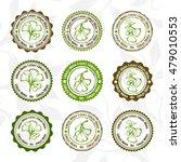 ginkgo biloba. circle stamps... | Shutterstock .eps vector #479010553