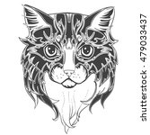 cat head. hand drawn ink cat... | Shutterstock .eps vector #479033437