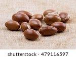argan   Shutterstock . vector #479116597