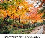 Blur Abstract Autumn Backgroun...