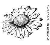 beautiful monochrome  black and ...   Shutterstock . vector #479234743
