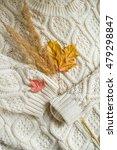 autumn still life composition... | Shutterstock . vector #479298847