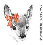 cute deer. pencil sketch of... | Shutterstock . vector #479607973