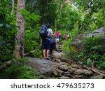 ramkhamhaeng national park ... | Shutterstock . vector #479635273