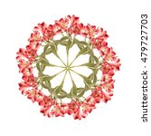 Small photo of Montage of alstroemeria flowers, stems and leaves, arranged in circular pattern. Isolated on white.