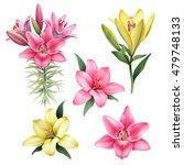 watercolor illustrations of...   Shutterstock . vector #479748133