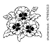 vector black contour of pansy... | Shutterstock .eps vector #479856313
