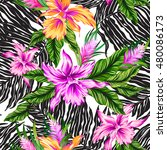 vector seamless floral pattern... | Shutterstock .eps vector #480086173