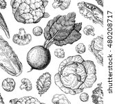 vegetable drawing seamless... | Shutterstock . vector #480208717