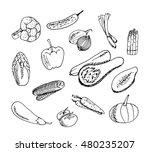 vegetables set on white... | Shutterstock .eps vector #480235207