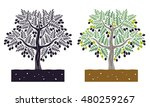 olive tree with leaves and... | Shutterstock .eps vector #480259267
