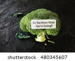 do you know what you're eating  ... | Shutterstock . vector #480345607