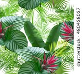 tropical leaves and flowers of... | Shutterstock .eps vector #480438037