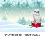 christmas theme  cute white owl ...