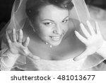 bride with  veil | Shutterstock . vector #481013677