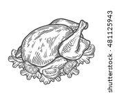 grilled roasted chicken  turkey ...   Shutterstock .eps vector #481125943
