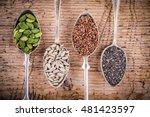 healthy superfood  pumpkin...   Shutterstock . vector #481423597