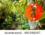 Nature Trail Scenes Calloway Peak - Fine Art prints