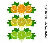 citrus flat vector illustration | Shutterstock .eps vector #481588513