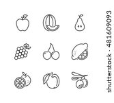 thin line icons set about fruit.... | Shutterstock .eps vector #481609093