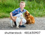 Stock photo smiling little boy with a cat and a dog sitting on the road the guy stroking a dog a cat rubs 481650907
