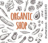 organic shop card with... | Shutterstock .eps vector #481805143
