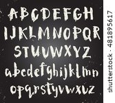 handwritten script font. unique ... | Shutterstock .eps vector #481895617