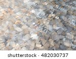 Image Of Surface Water With...