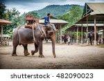 Chiang Mai  Thailand   Februar...
