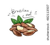 handful of brazil nuts and... | Shutterstock .eps vector #482113507