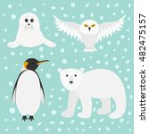 arctic polar animal set. white... | Shutterstock .eps vector #482475157