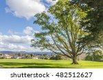 Auckland Park  New Zealand
