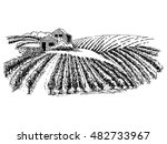 Hand Drawn Vector Rural...