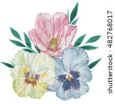 watercolor bunch of pansy and...   Shutterstock . vector #482768017