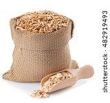 Oat grains with husk in burlap...