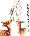 Watercolor Two Deers Looking U...