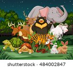 different types of wild animals ... | Shutterstock .eps vector #484002847