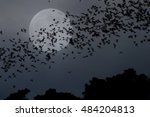group of bat flying at the full ... | Shutterstock . vector #484204813
