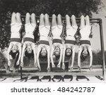showgirls hanging from monkey... | Shutterstock . vector #484242787