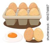 illustrator of eggs in box | Shutterstock .eps vector #484376887